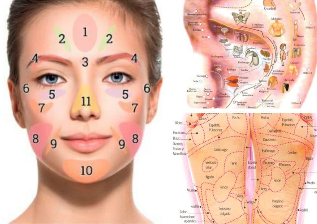 Taller de reflexología facial