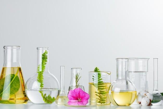 Taller aceites esenciales y cinco elementos
