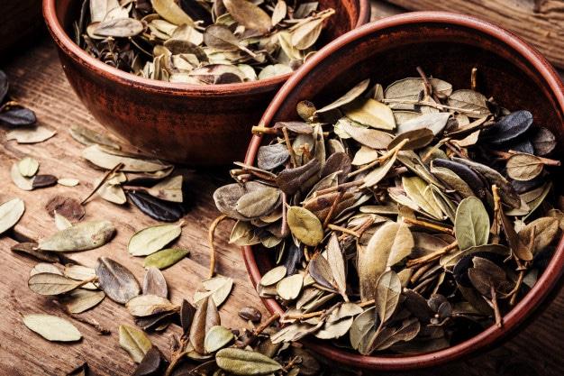 Fitoterapia china con plantas occidentales